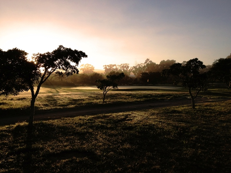 Early morning mist over the Moorreesburg golf course