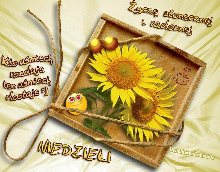 Kto uśmiech rozdaje ten uśmiech dostaje :) Życzę słonecznej i radosnej Niedzieli #niedziela