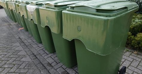 Brrr, beestjes in je groene container? Zo laat je ze verdwijnen!