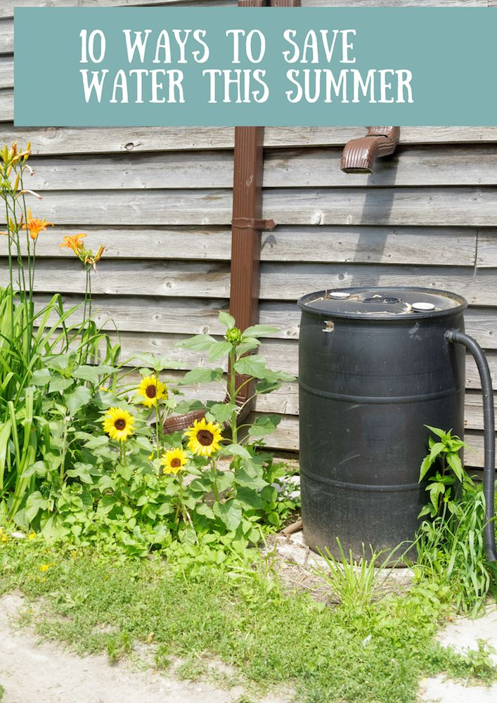 10 ways to save water this summer hen family blog for Top 10 ways to conserve water