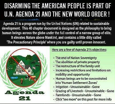 gun control is part of Agenda 21