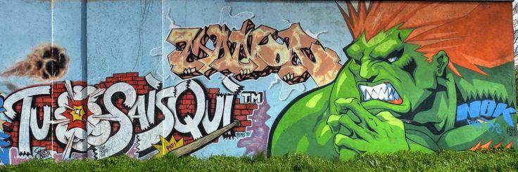 Street art gymnase lycée hôtelier à Étiolles - Street Fighter Blanka en couleur 20160420118