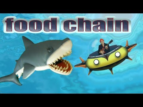 Ocean food chain song. What is the fastest shark and how do they depend on sunlight? Kids' science - YouTube