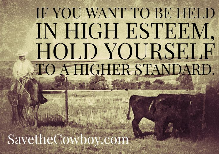 If you can be trusted with little things, more will be trusted to you. If you cannot be trusted with small tasks, you cannot be trusted with bigger ones. Luke 16:10 Simplified Cowboy Version _______________  For a gift of any amount to Save the Cowboy in the month of June 2017, we are sending a copy of Kevin Weatherby's new book, The Gospel of Luke, Simplified Cowboy Version. Just click the donate button on our FB Page or go to https://pushpay.com/pay/savethecowboy