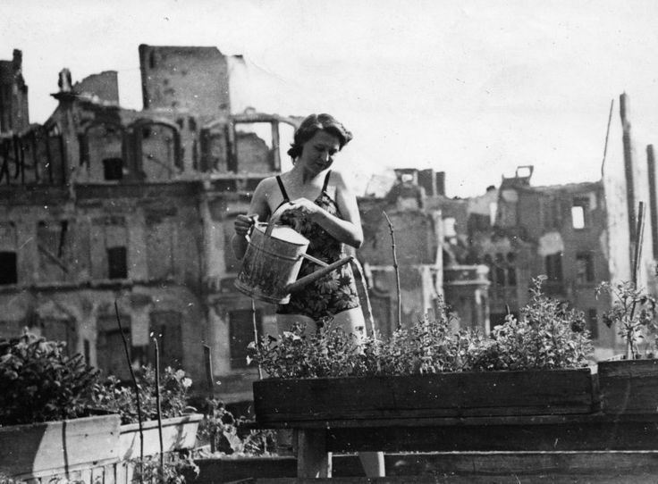 A new book of photographs depicts Berlin immediately after World War II. Even in the ruined city, there were signs of life. Here, a woman waters her balcony garden, a matter of survival in the starving city.