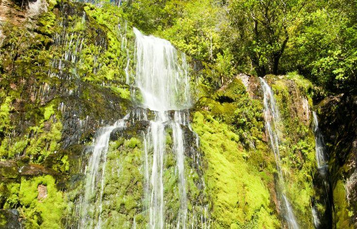 Charming Creek Walkway - Danita Delimont/Getty Images