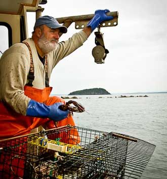 1000 ideas about lobster fishing on pinterest maine for Fishing in gainesville fl