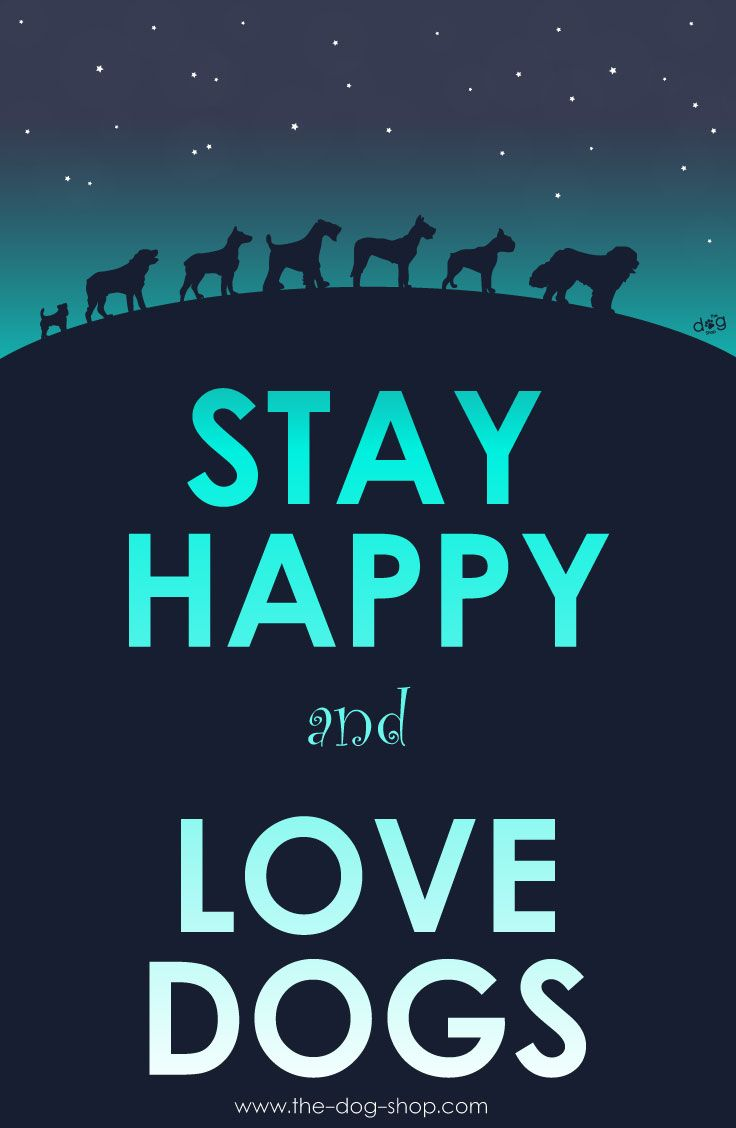 Stay happy and love dogs