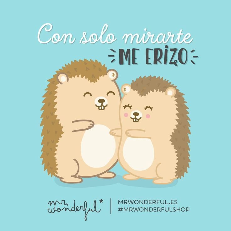 Con solo mirarte, me erizo. Mr Wonderful