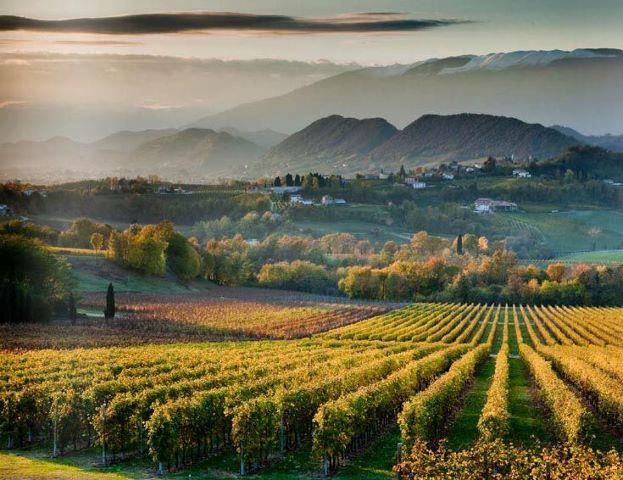 Valdobbiadene is a picturesque wine growing area just below the Alpine areas of Veneto.  Come and visit Nino Franco winery: http://www.ninofranco.it/en/company/