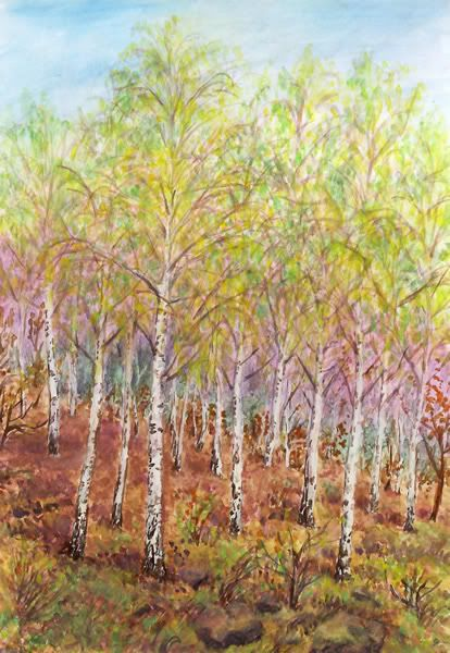 KDYŽ BŘÍZY PROMLOUVAJÍ Jana Haasová Vesuvanka Jediný pohled na stromy bělokoré s něžnými lístečky tiché a skromné na skále uchycené anebo v hájích rostlé Barvami a ptačími hlasy zpívá jaro a kdesi v dálce jen sotva znatelně zaznívá Duben Petra Iljiče Čajkovského