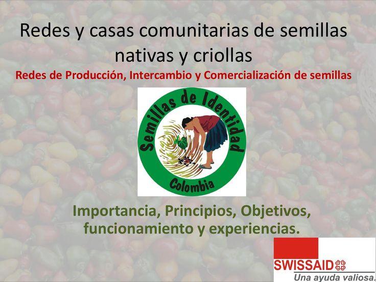 Banco de semillas  Ponente: Mauricio García (Swissaid)   Encuentro de Biodiversidad en Jardín, Antioquia. 26 y 27 de Octubre de 2013