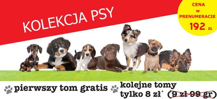 Kolekcja Psy