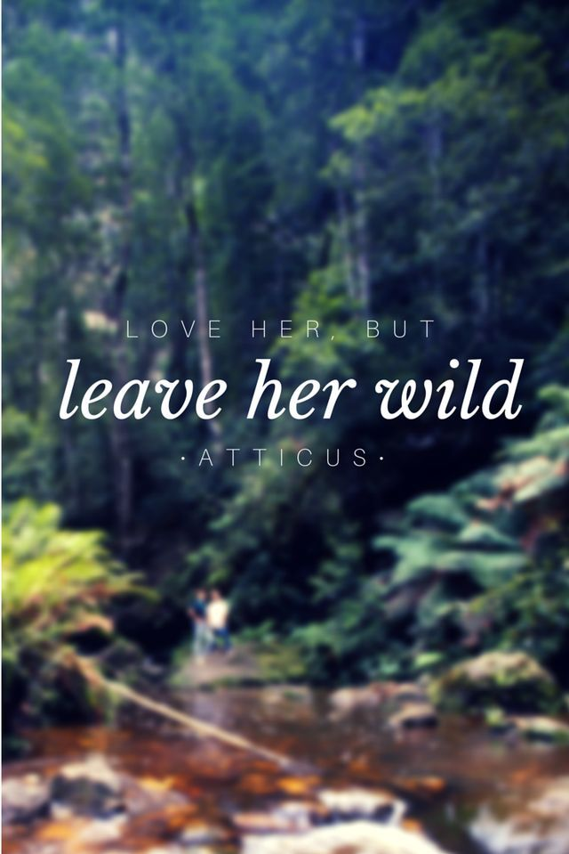 Leave her wild. Be dangerous, take a stand for that which should not perish