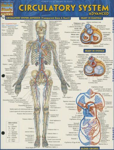 Study Guide For Human Anatomy Physiology Answers Chapter 9 ...