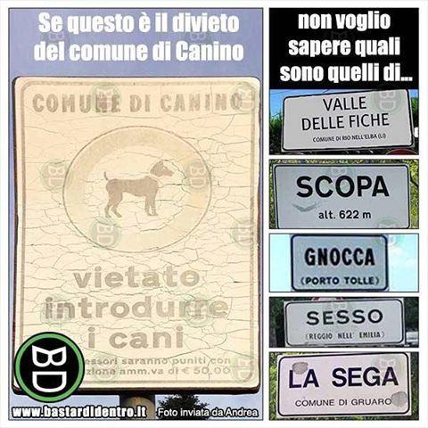 #nomi poco comuni  Seguici su youtube/bastardidentro #bastardidentro #cani www.bastardidentro.it