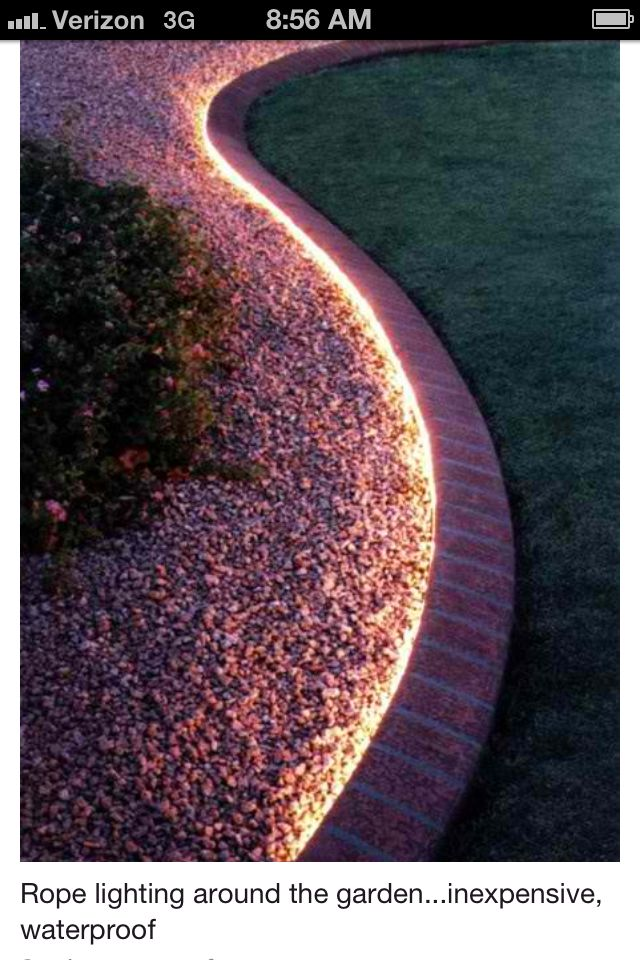 Rope lighting for back yard. It is inexpensive and waterproof