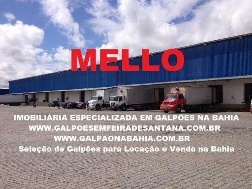 Galpão Locação, Venda Capuchinhos Feira de Santana (BA)