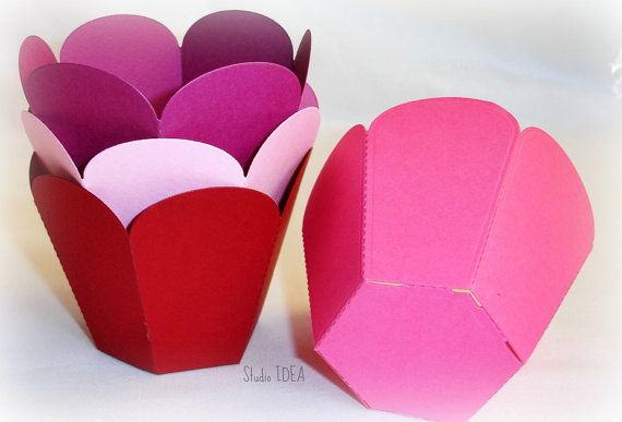 Set of 24 Cupcake Wrappers Petal Style Container  by StudioIdea