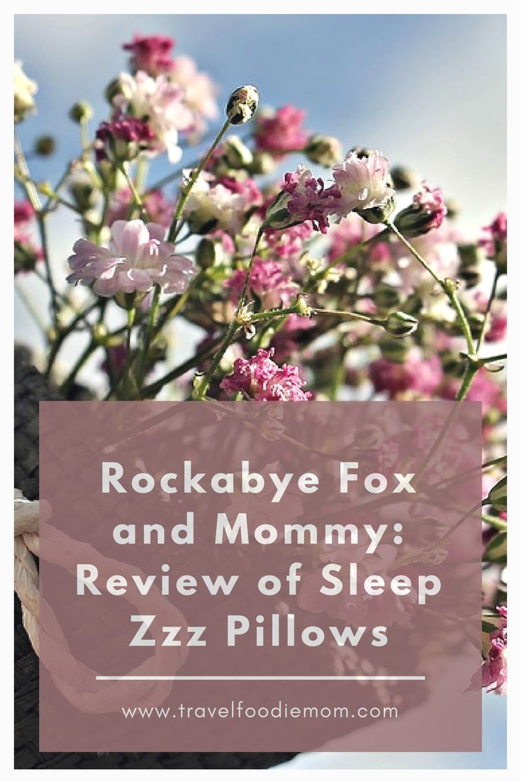 Rockabye Fox and Mommy: Review of Sleep Zzz Pillows  #bedtime #kids #Parenting #pillow review #pillow reviews #pillows #pillows for better sleep #sleep zzz pillow #sleeping