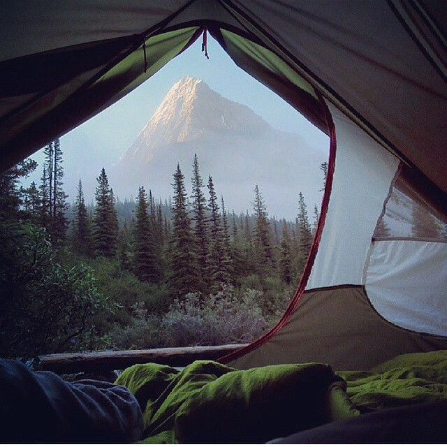 One of my favorite views in the world. Sitting in a tent, admiring the forest. Mountains are always a bonus! <3