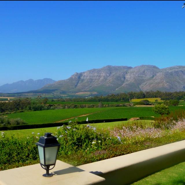 Ernie Els vineyard, Stellenbosch