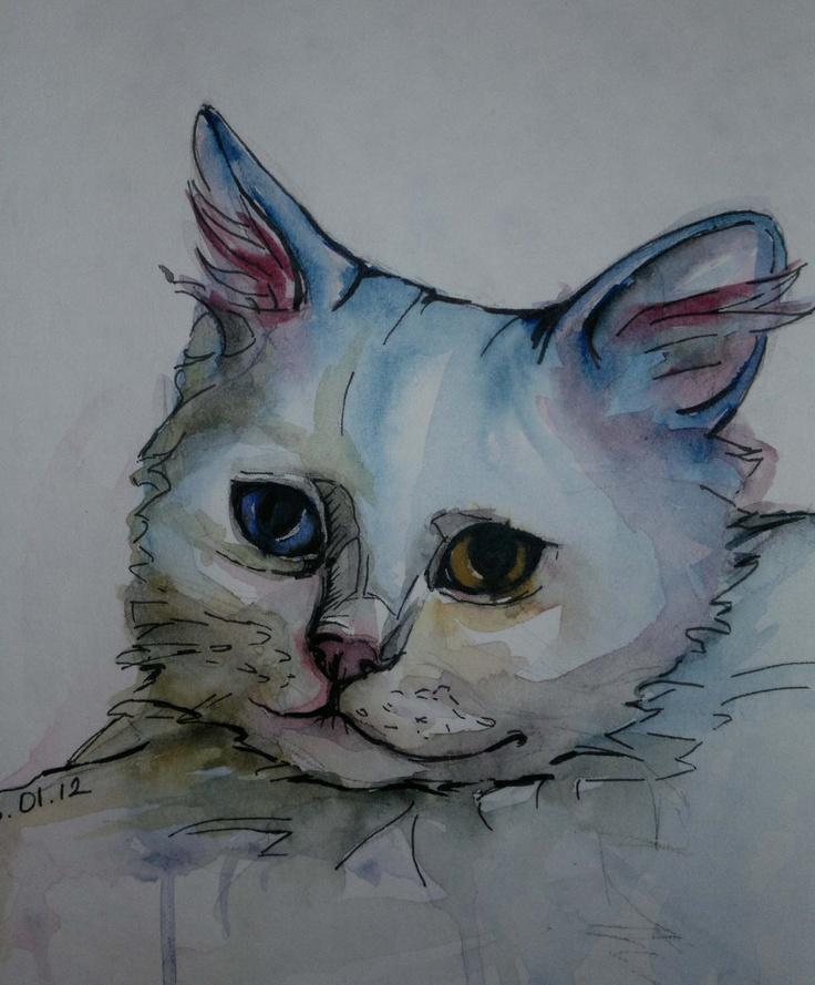 Bulut. My sweet Van Cat. Watercolour.