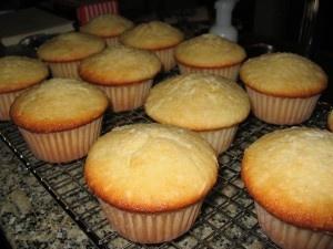koolhydraatarme kokos cupcakes