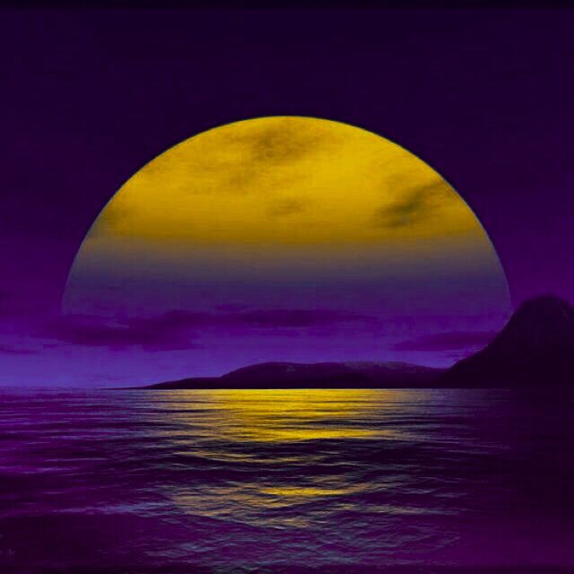 1000 Images About Color Combinations Purple Yellow