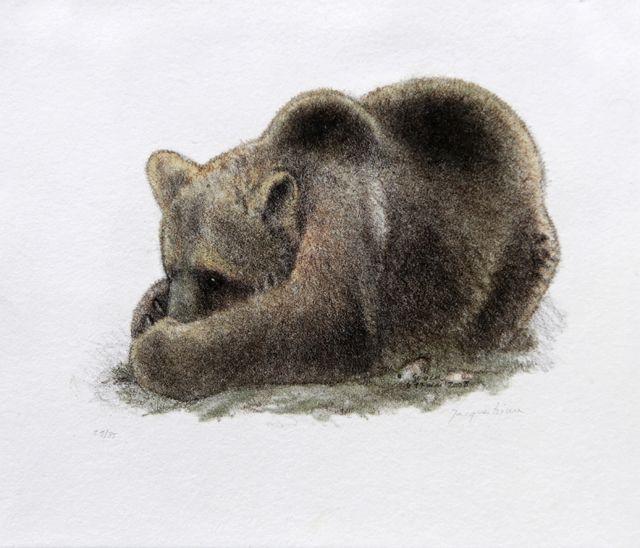 Art naturaliste Jacques Rime Titre: Ours et noix I