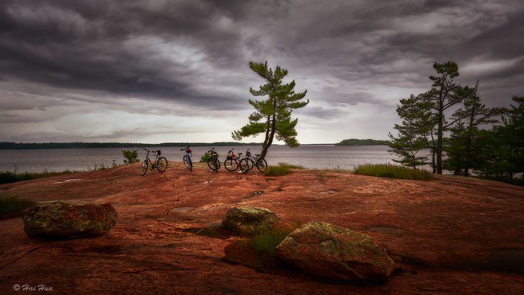 Rocks, Trees and Bicycles - A cloudy summer afternoon in Killbear Provincial Park. In the middle is the famous tree that leans side way due to prevailing winds especially in winters.