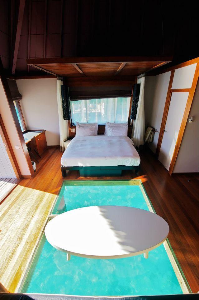 17 best ideas about overwater bungalows on pinterest for Bungalows flotantes en bora bora