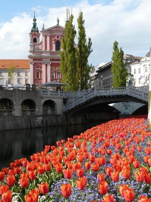 Ljubljana, Slovenia. This is absolutely gorgeous!