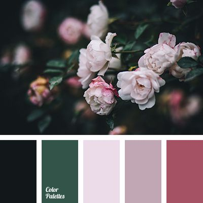 Color Palette Ideas | Page 11 of 240 | ColorPalettes.net