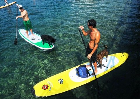 Stand-up paddle boarding in Upstate NY: 9 best spots to enjoy, learn the sport   NewYorkUpstate.com