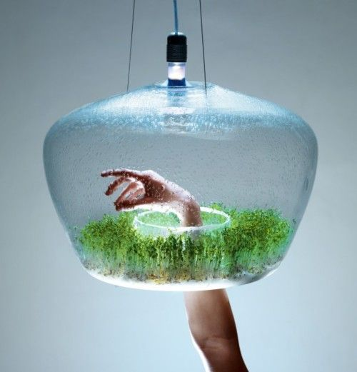 Greenhouse by Czech designer Kristýna Pojerová is a suspended glass domed lamp with an inner gutter for growing herbs and other small plants in urban environments. A cylindrical opening in the base permits quick access by hand to the lamp's interior, and allows additional light to exit below.