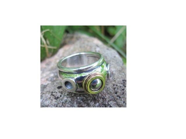Nautilus ring by philippeplanas.com: Plana Jewels, Joaillier Philippe, Philippe Plana, Nautilus Rings, Philippeplanas Com, Silver Rings