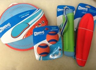 Multiple Chuckit toys can be played in the water!