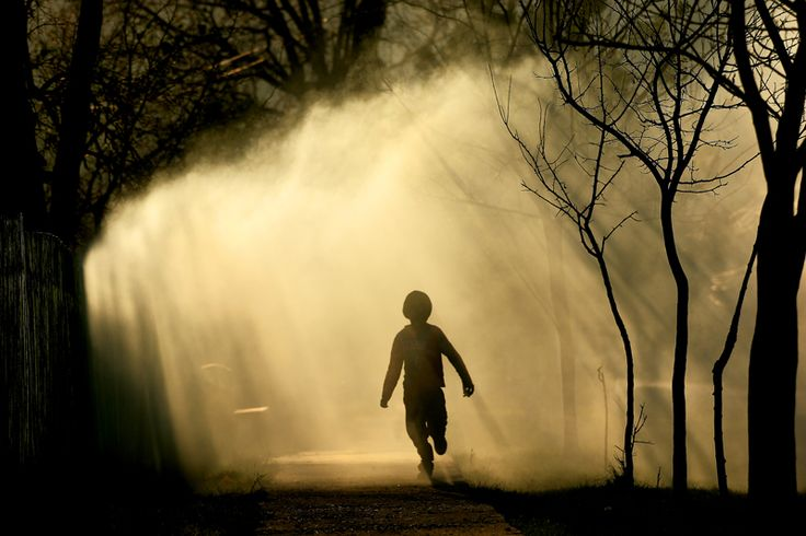Povestile copilariei | Sorin Onisor