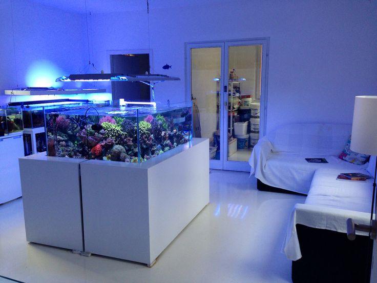 Akvarijum Studio ReefrooM