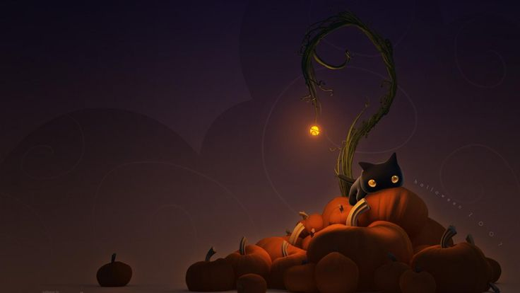 halloween cat wallpaper 1080p https://www.hdwallpaperspop.com/halloween-cat-wallpaper-1080p/