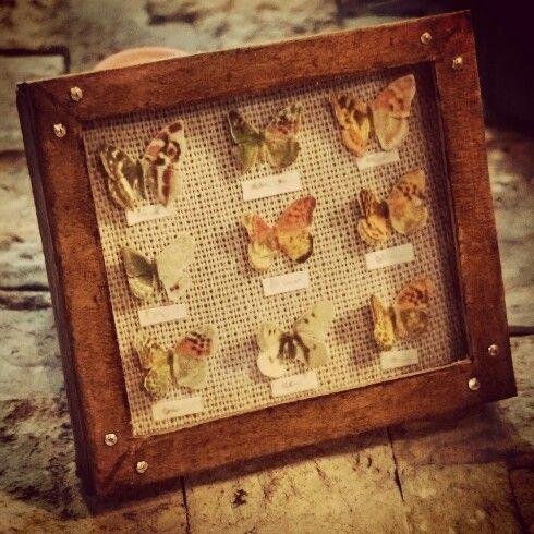 Dollhouse butterflys