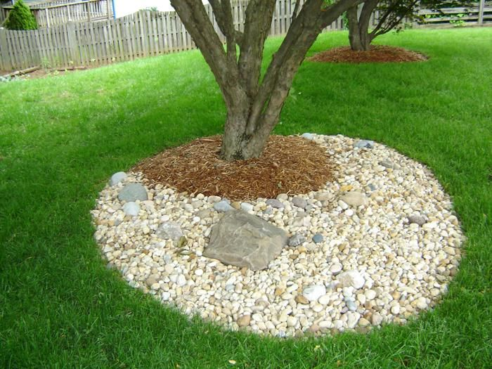 Landscaping Yard Drainage : Yard drainage ideas on solutions