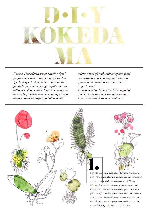 L'arte del kokedama ha origini giapponesi. Si tratta di piante le quali radici vengono fatte crescere all'interno di una sfera di terriccio ricoperta di muschio, anzichè in vaso. Questo permette di appenderle al soffitto, quindi le rende adatte a tutti gli ambienti. La prima volta che ho visto le immagini di queste piante ne sono rimasta incantata. Ecco la mia guida illustrata su come realizzare un kokedama!