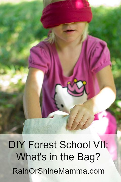 DIY Forest School VII: What's in the Bag? Fun and educational nature activity for preschoolers from Rain or Shine Mamma.