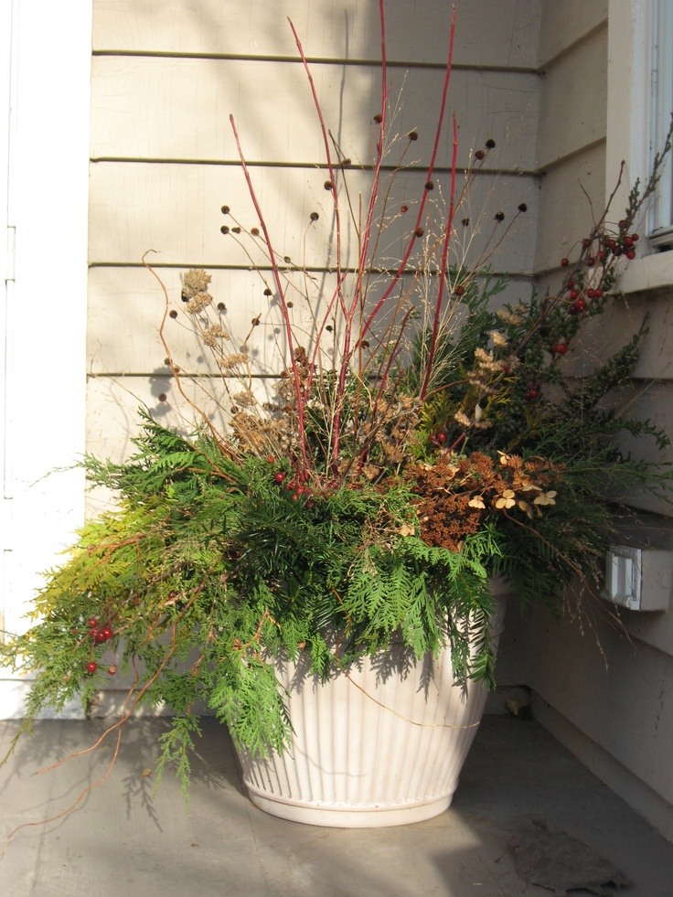 Winter container Garden Ideas Pinterest