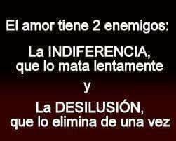 El amor tiene 2 enemigos: La indiferencia que lo mata lentamente y La desilusión que lo elimina  de una vez  .