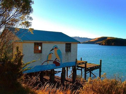 """""""Crib' near Dunedin, NZ. Classic Kiwiana!"""