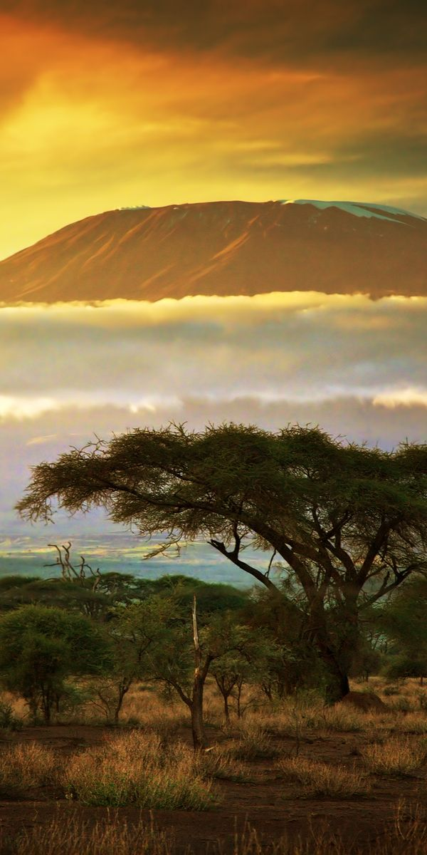Mt. Kilimanjaro - This is for the serious hikers; it is the tallest mountain in Africa that overlooks the beautiful savanna plains that will simply take your breath away.