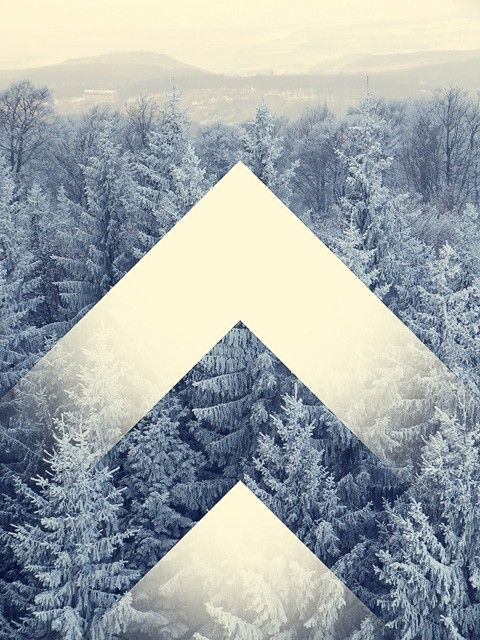 photography, geometric, forest, trees, winter, arrows..............How could I make this a quilt?